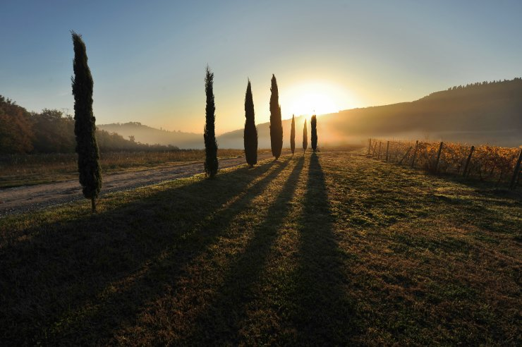 Typical Tuscan Agriturismo